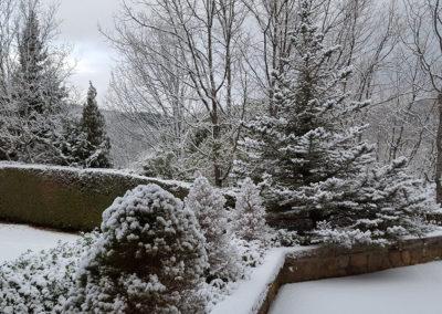 Jardín nevado 1