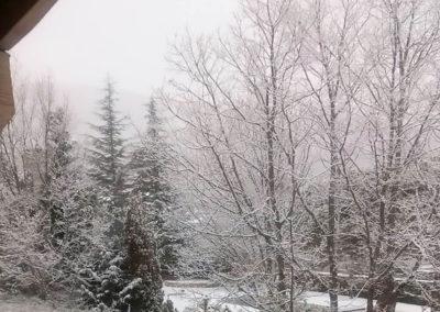 Jardín nevado 5