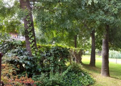 Paisaje jardín Casa Bonita Navacerrada