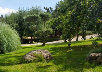 Vegetacion jardín Casa Bonita Navacerrada